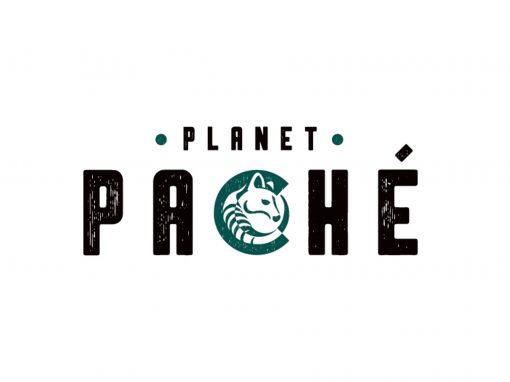 Pache Logo